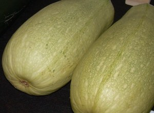 PAIR OF MARROWS (any size)