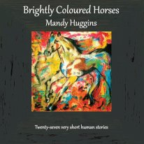 Brightly Coloured Horses: Twenty-seven very short human stories