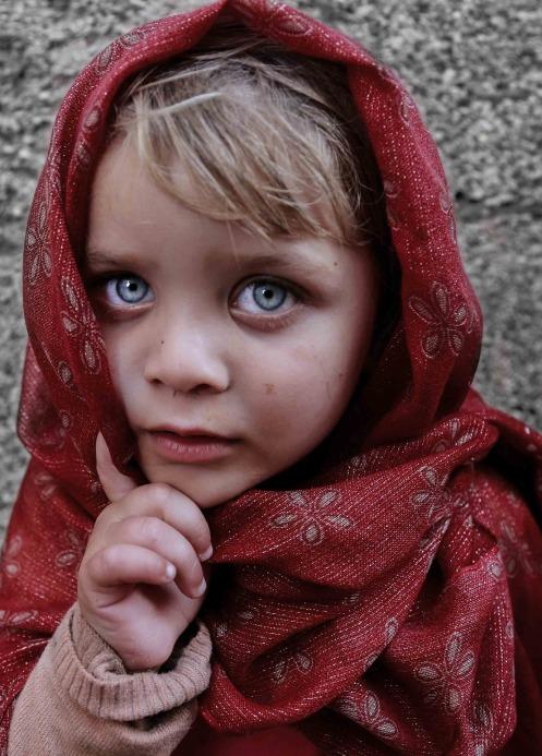 blue-eyes-1689994_1920